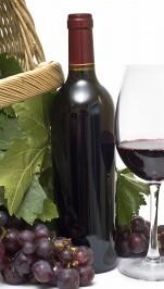 vino-200x300